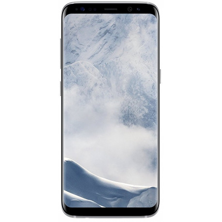 Samsung G955 Galaxy S8 Plus Argent Polaire