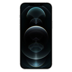 "iPhone 12 Pro Max (Double SIM - 6.7"" - 128 Go) Argent"
