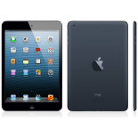 Ipad Mini 16 Go Wifi & Cellular Noir